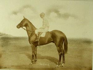Жокей с жеребцом 4-х лет Эмбалле-победителем скачек на  великокняжеский приз.