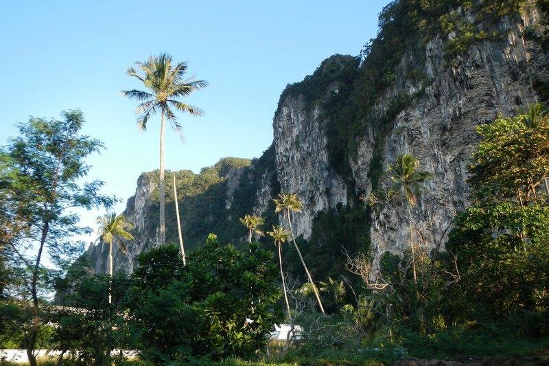 Горы и кокосовые пальмы Ao Nang