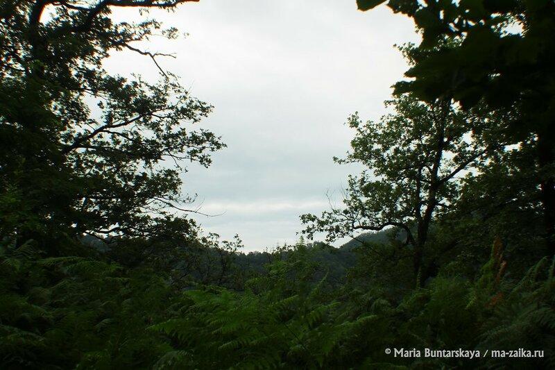 Берендеево царство, Краснодарский край, Сочинский Национальный парк, 15 июля 2015 года