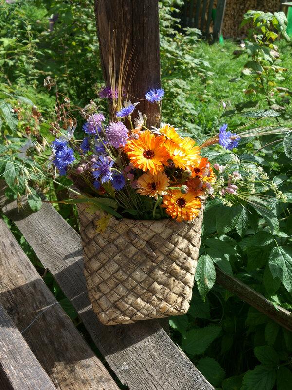 Многоцветье августа