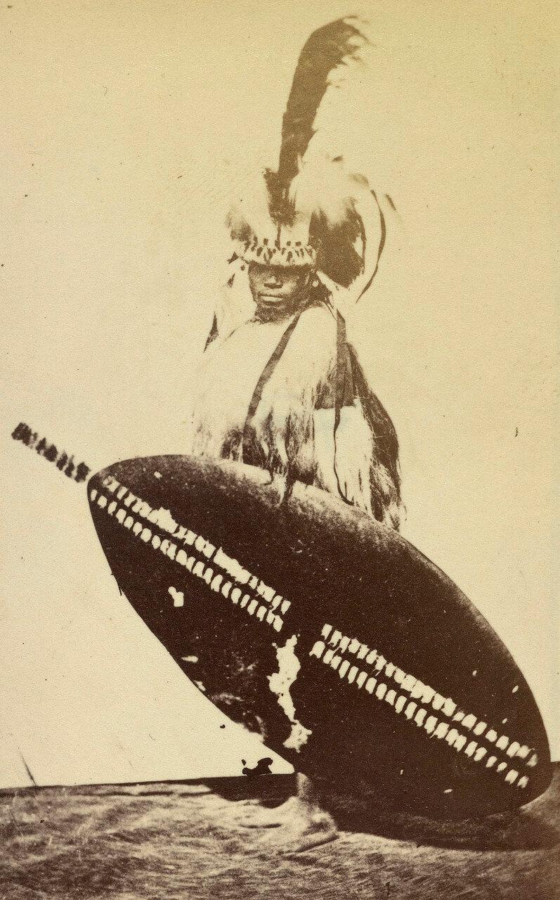 Зулусский воин в парадной одежде