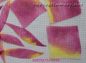 Мастер-класс. Хризантема из ткани «Ягодка» от Vortex  0_fbf8b_496ebb22_M