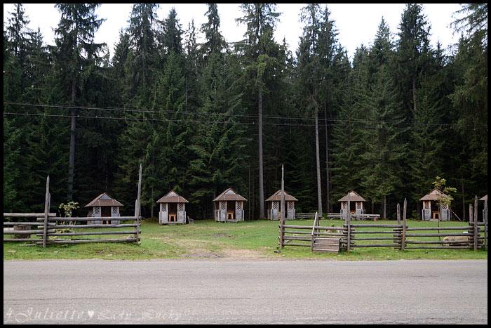 The Carpathians - 2014