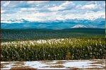 Природа, пейзаж, фото из интернета (228).jpg