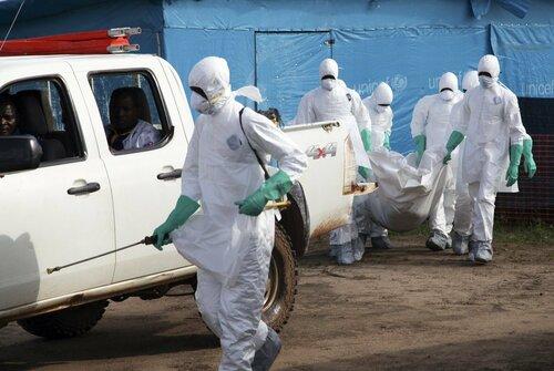Эбола может проникнуть на территорию России