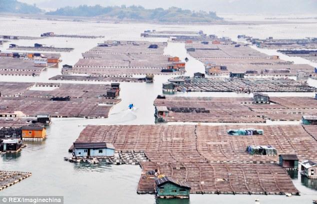 Плавающий город «морских цыган» в Китае 0 11e9e9 5881f7e0 orig