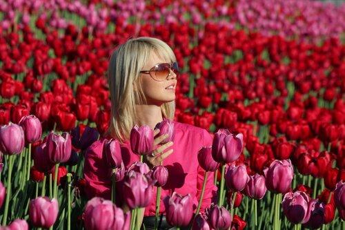 Среди тюльпанов