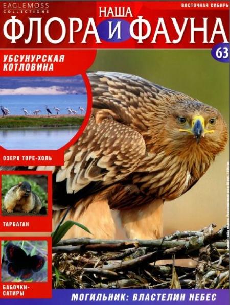 Книга Журнал: Наша флора и фауна №63 (2014)