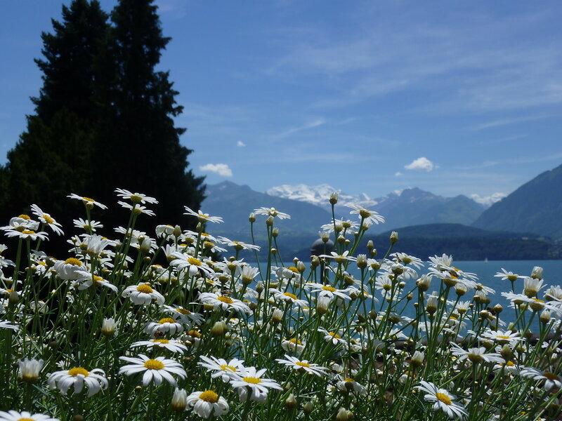 Улыбнитесь, вы в Швейцарии:)