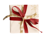 KDesigns_Waiting_for_Christmas_El(58).png