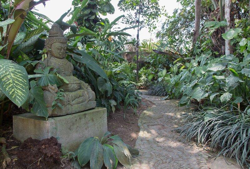 Бали ч1-83.jpg