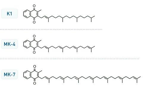 Vitamin_K_structures.jpg