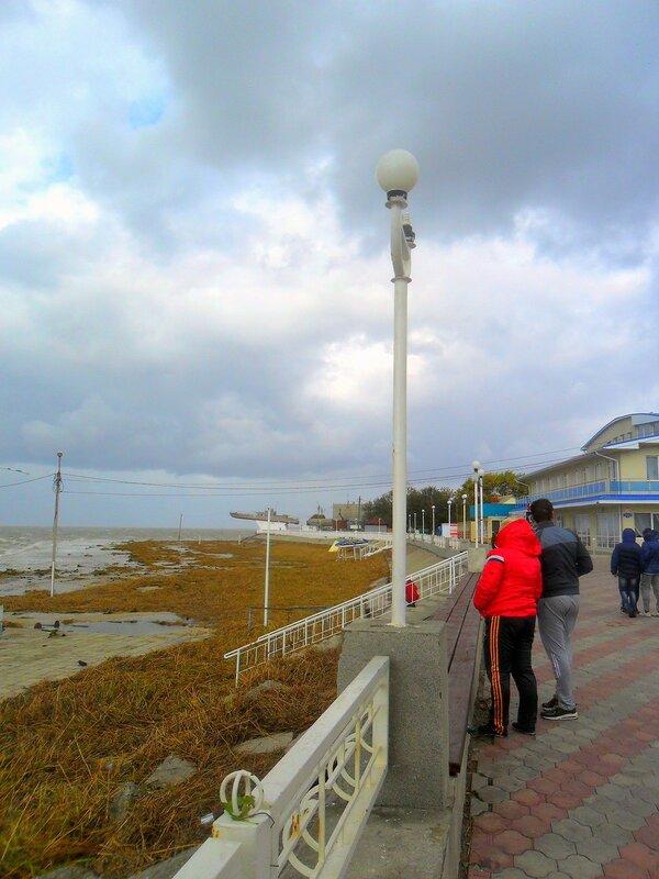 Сентябрь, Азовское побережье, осенние картинки 07