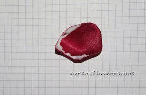 Мастер-класс. Роза  «Пышка» от Vortex  0_fc153_ae83b688_M