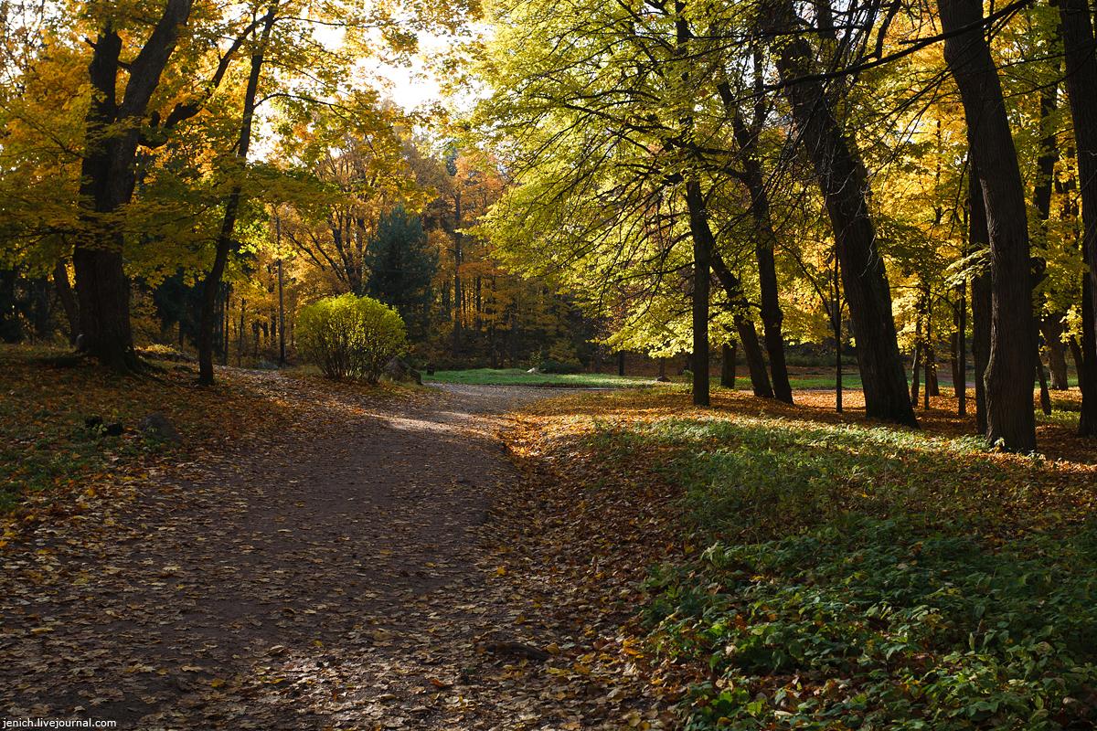 фото, фотография, осень, Монрепо, Выборг