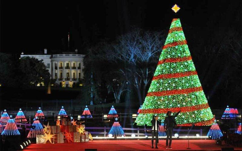 Необычные новогодние деревья
