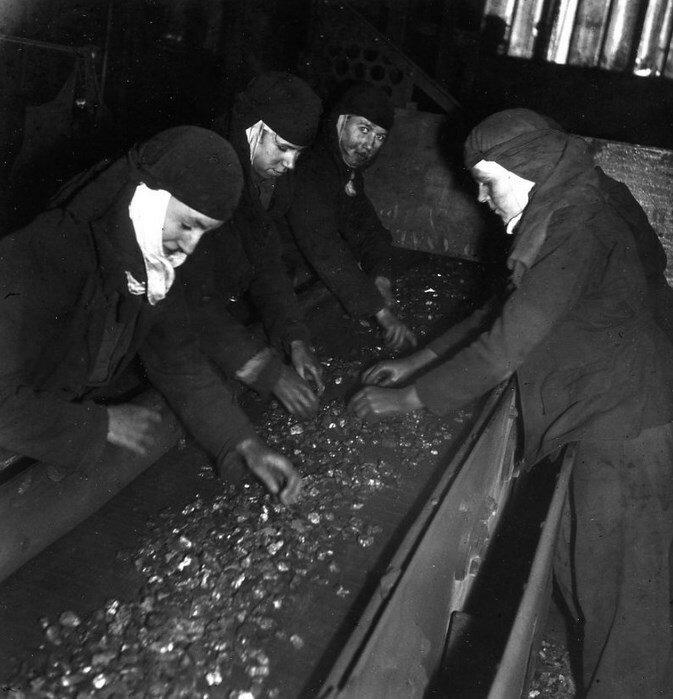 1945. Сортировщики