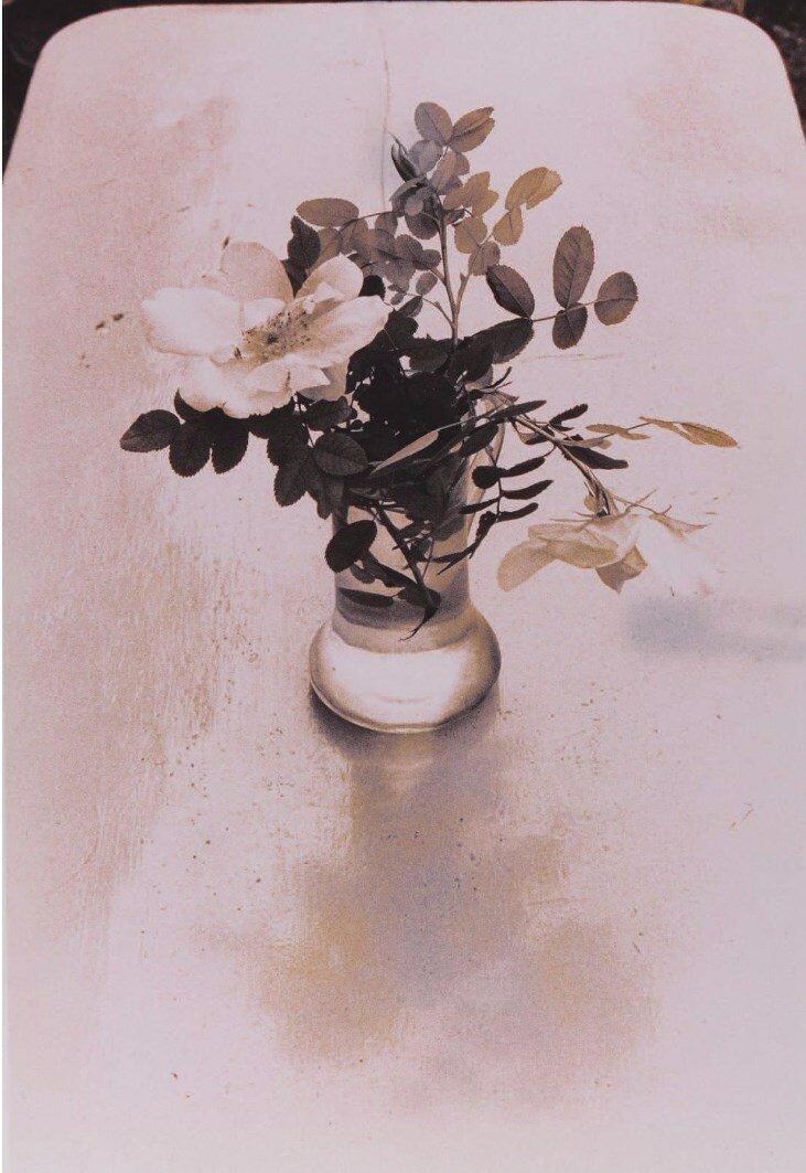 1978. Цветок