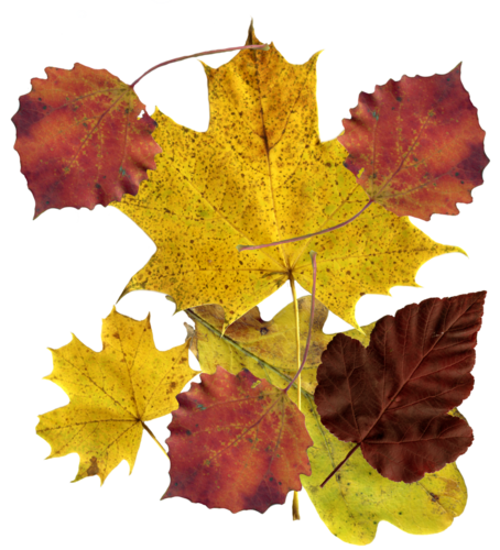 Осеннее равноденствие