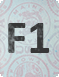 Виза F1 в США