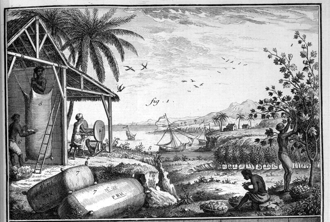 Рабы занимаются переработкой хлопка (Французская Гвиана, 1862 год)