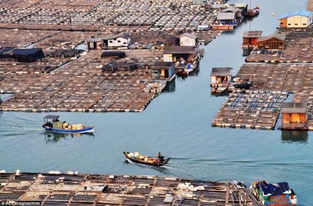 Плавающий город «морских цыган» в Китае 0 11e9eb 69875c0f orig