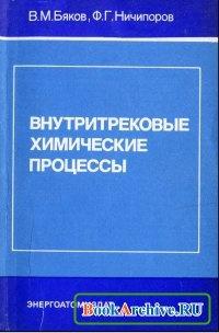 Книга Внутритрековые химические процессы.