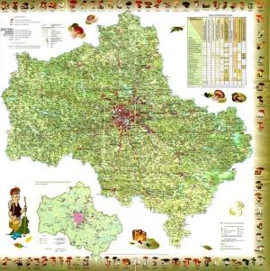 Книга Карта грибника. Московская область