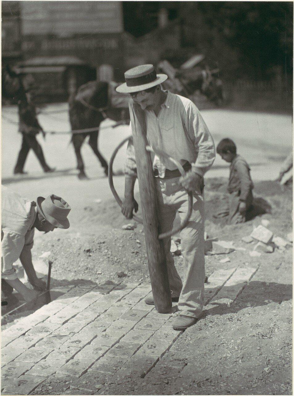 1899. Мостильщик