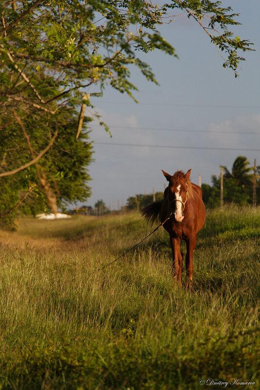 Центральная Куба