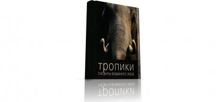Книга Животный мир тропических лесов Африки и Азии богат фауной, и об этом чуть больше вы узнаете из #книги «Тропики. Гиганты влажног
