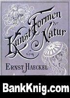 Книга Kunstformen der Natur pdf 266,93Мб