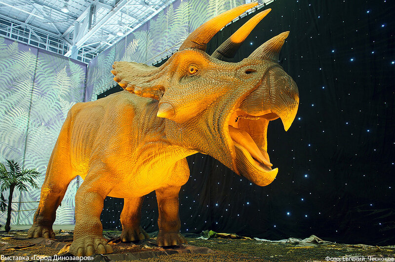 Зима. ВДНХ. Город Динозавров. 22.12.14.33..jpg