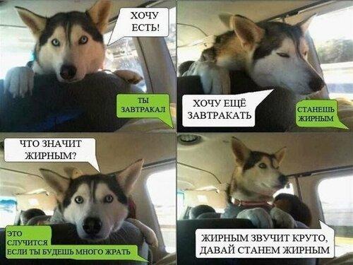 https://img-fotki.yandex.ru/get/15597/37228632.d/0_92383_805133a8_L.jpg