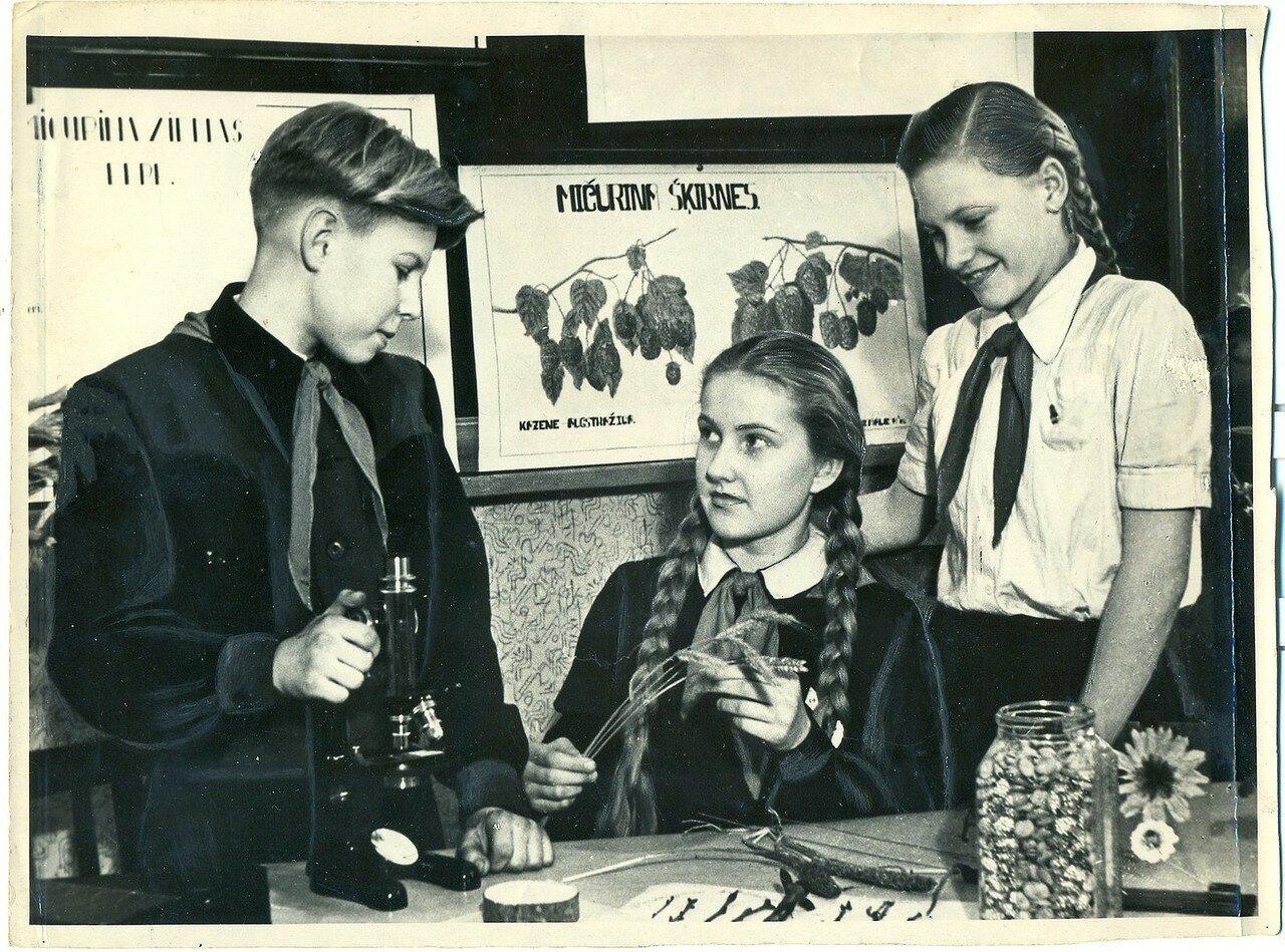 Прибалтийские пионеры