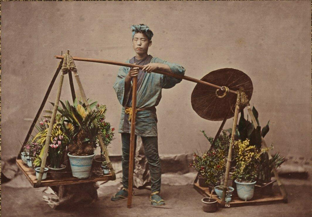 Торговец растениями