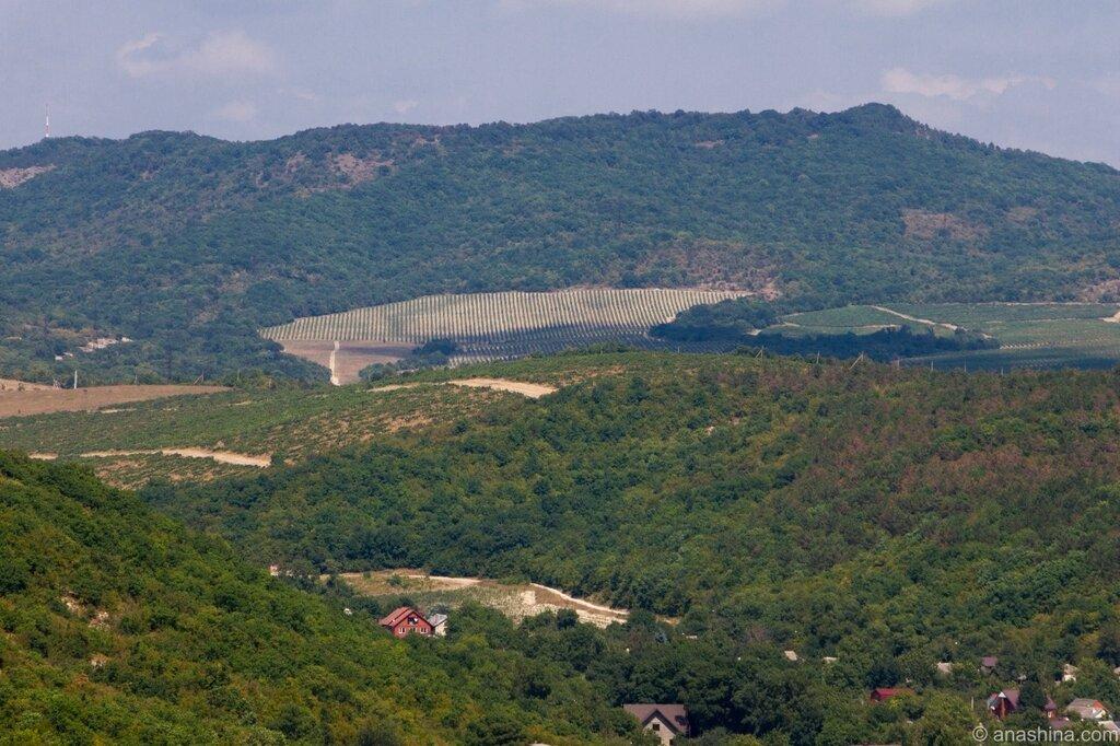 Горы и виноградники, Абрау-Дюрсо