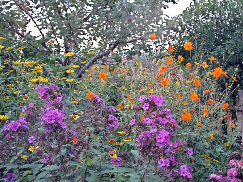 Вечер поздней осени в райском садике