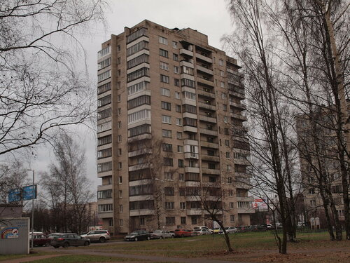 Пискаревский пр. 38