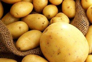 В Молдове на треть уменьшится урожай картофеля в 2015 году