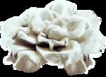 mzimm_snowflurries_flower1.png