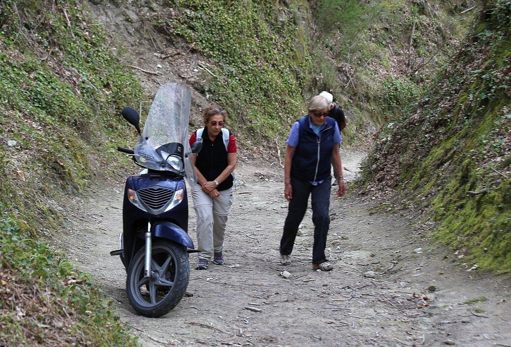 Ischia. The trail to Monte Epomeo.
