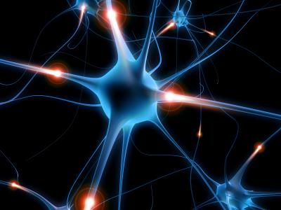 Мозг человека полон мутаций, показало исследование