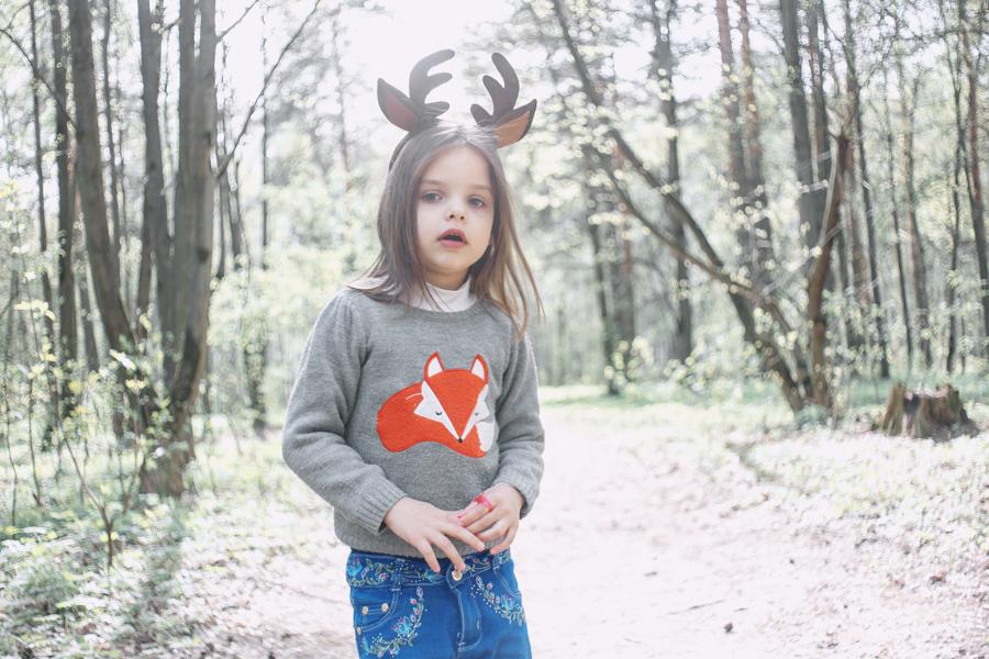Лиза + лиса + оленьи рога