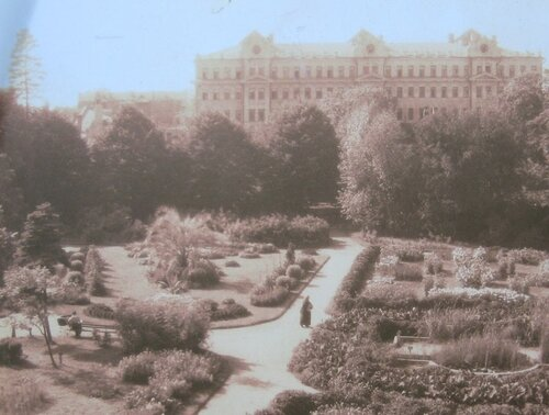 Ботанический сад МГУ. Аптекарский огород