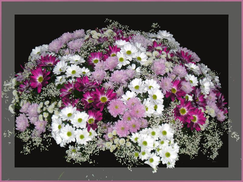 http://img-fotki.yandex.ru/get/16/ztns67.5/0_ac49_7f4c8a91_XL.jpg