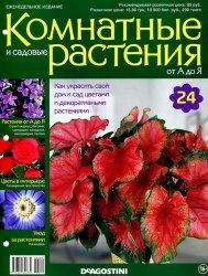 Журнал Комнатные и садовые растения от А до Я №24