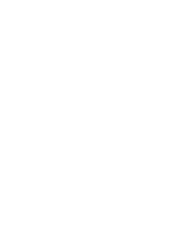 NLD Snowflakes.png