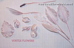 "Мастер-класс. Орхидея ""Элен""от Vortex  0_fbf22_77a245a6_M"