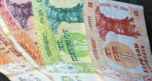 НБМ на завтра установил новые рекордные курсы валют